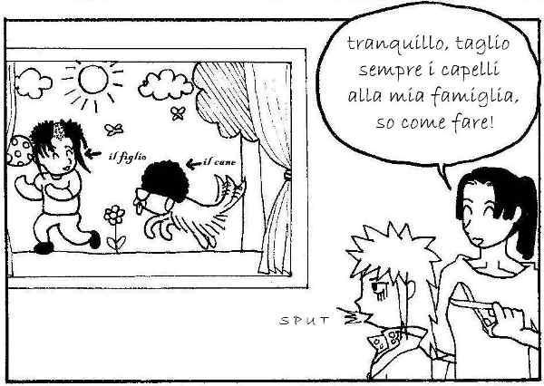 [vignetta]
